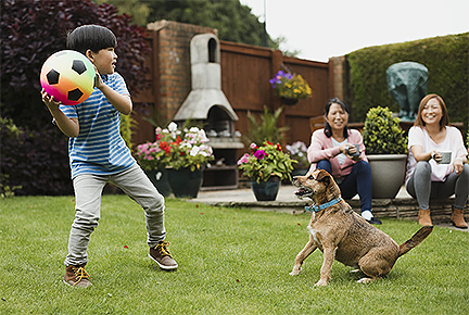 Small child playing in a yard with a soccer ball and a dog, with two adult women sitting in the back